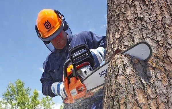 chainsaw safety hero