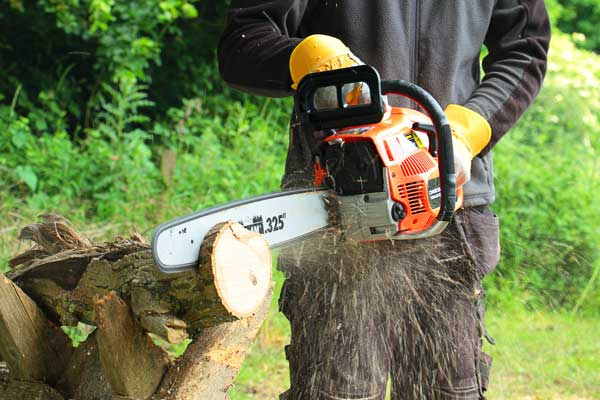 chainsaw rental