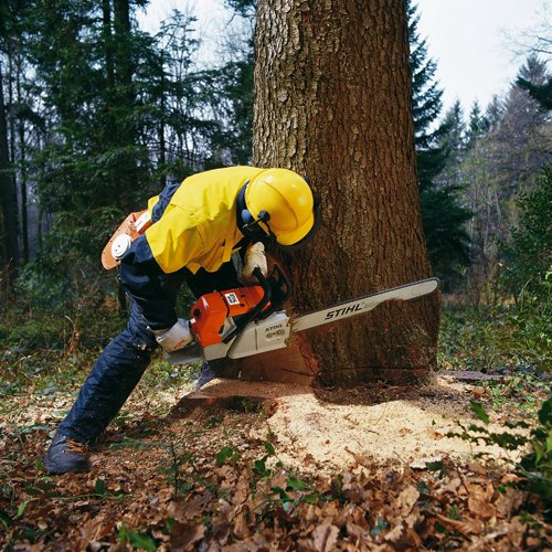 What Chainsaw Do Loggers Use And Why